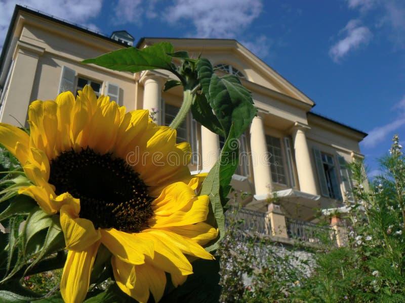 Palacio de Freudenberg imágenes de archivo libres de regalías