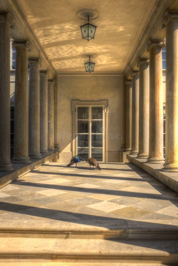 Palacio del azienki del  de Å imagen de archivo libre de regalías