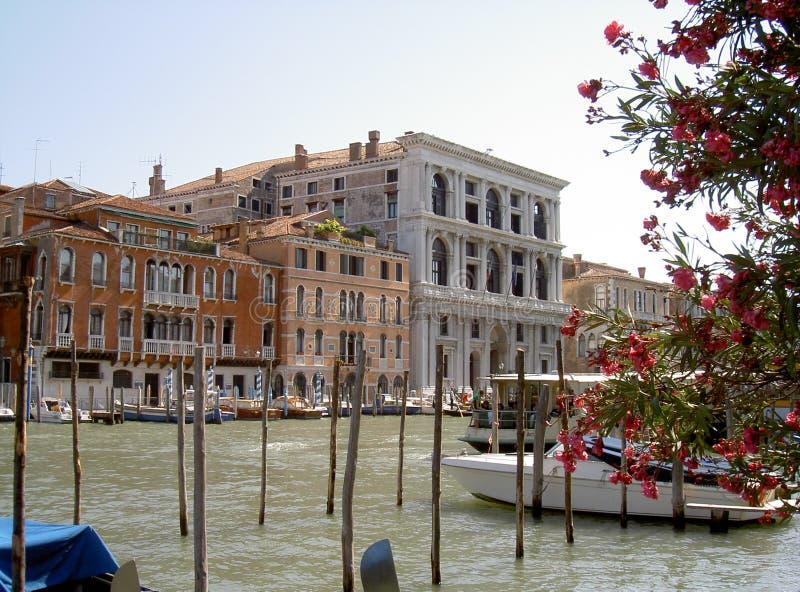 Palacio, Venecia - Italia fotos de archivo