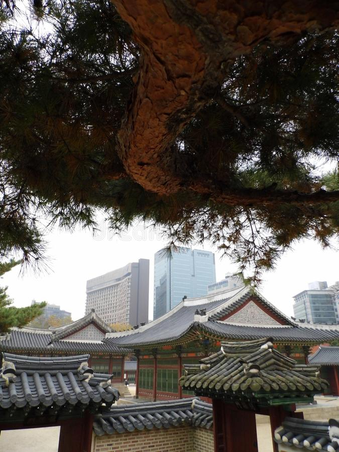 Palais de la Corée images stock