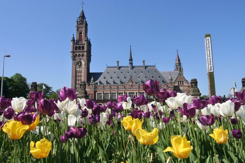 Palais de paix à la Haye images libres de droits