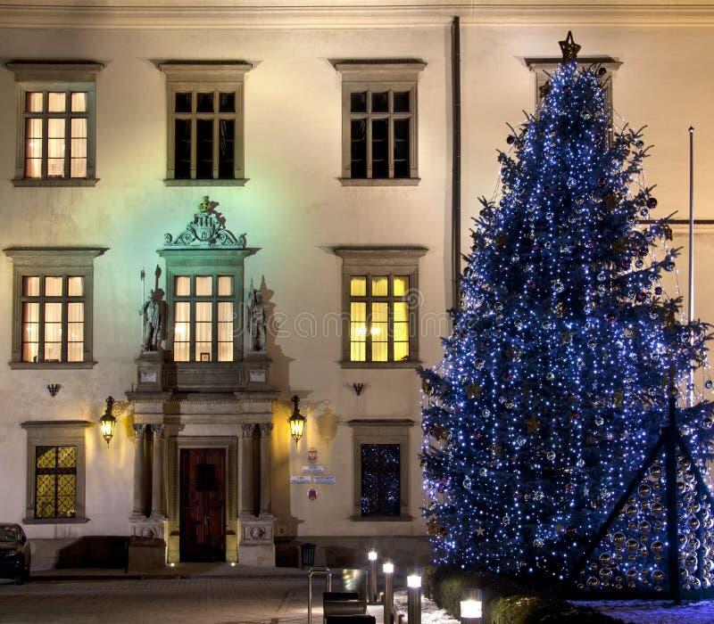 Palais de Wielopolski - Cracovie - Pologne photos libres de droits