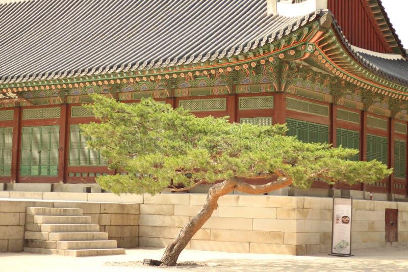 Palais intérieur de Gyeongbokgung photo stock