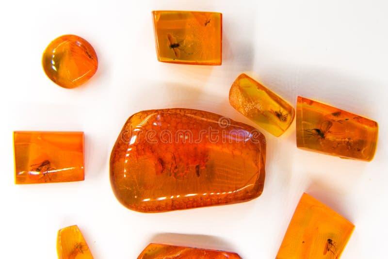 Palanga Amber Museum, Litauen stockfotos