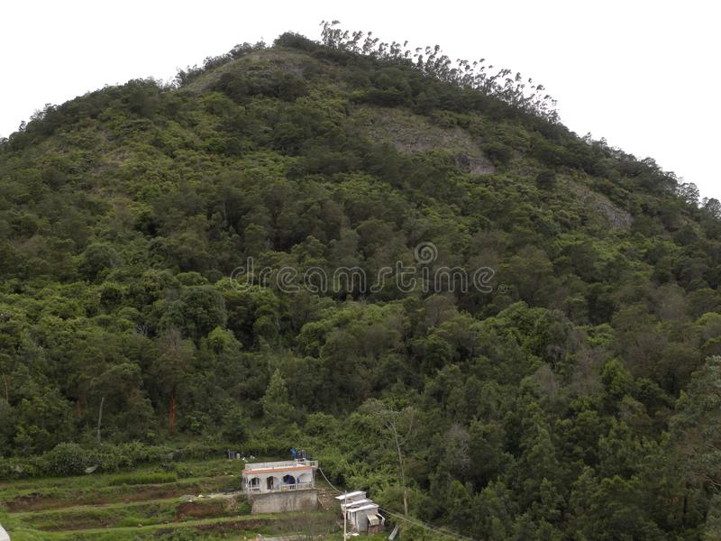 Palani hills with green trees and houses on the valley. Green trees covered Palani hills with houses at the bottom of the hills royalty free stock image