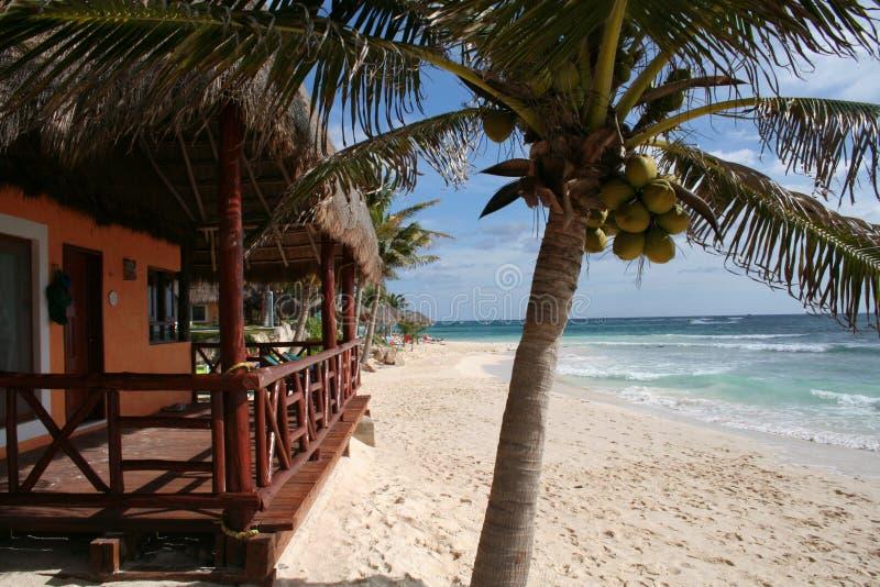 Palapa with Balcony in Playa del Carmen - Mexico royalty free stock photo