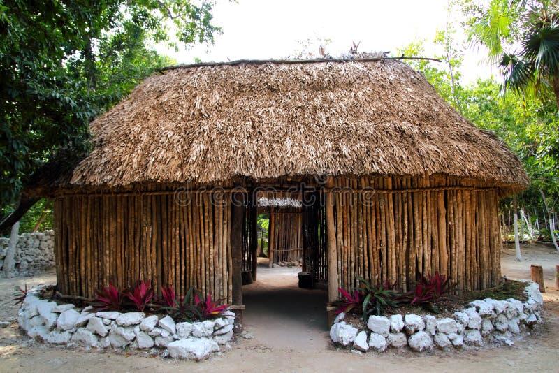 Palapa maya de hutte de cabine de maison en bois du Mexique image libre de droits