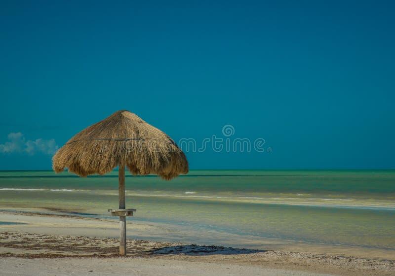 Palapa paraply längs en karibisk strand på Isla Holbox Mexico arkivbild
