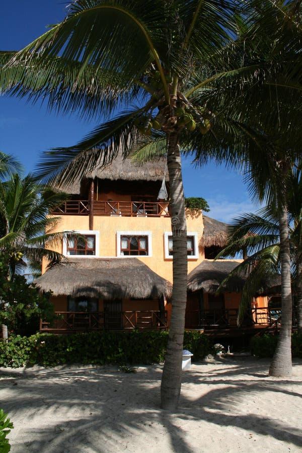 Palapa in Playa del Carmen - Mexico stock photography