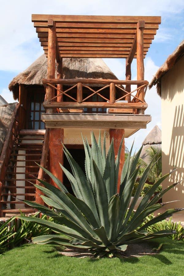 Palapa in Playa del Carmen - Mexiko stockfotografie