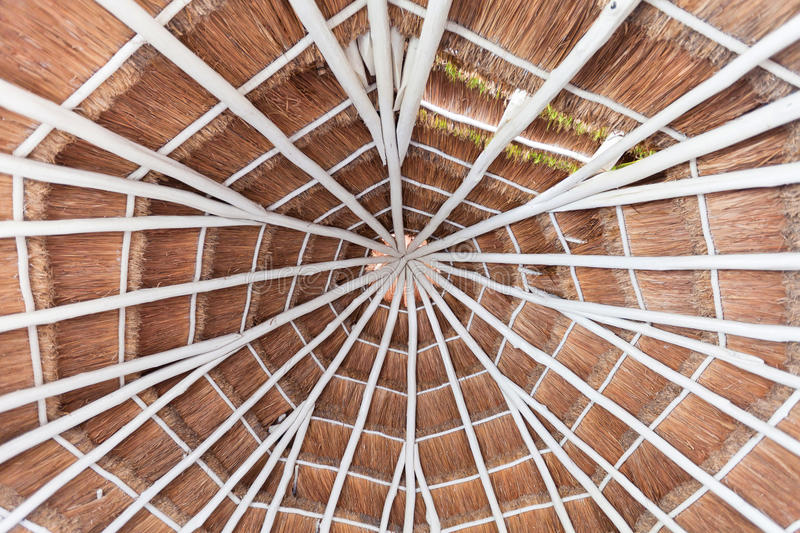 Download Palapa Style Roof Of A Hotel Room In Mexico Stock Image - Image of palm, architecture: 24048109