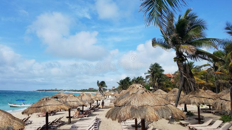 Palapas和躺椅沿海滩 免版税图库摄影