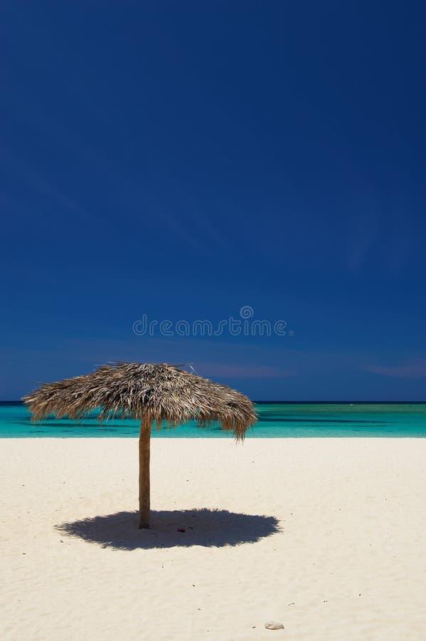 palapas της Κούβας παραλιών holguin στοκ εικόνα με δικαίωμα ελεύθερης χρήσης