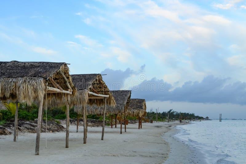 Palapas sur une plage sablonneuse du Golfe du Mexique photos libres de droits