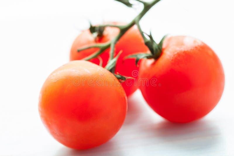 Palatable fresh tomatos stock photography