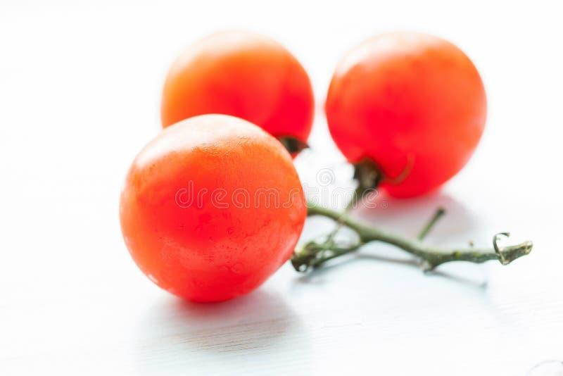 Palatable fresh tomatos stock photo