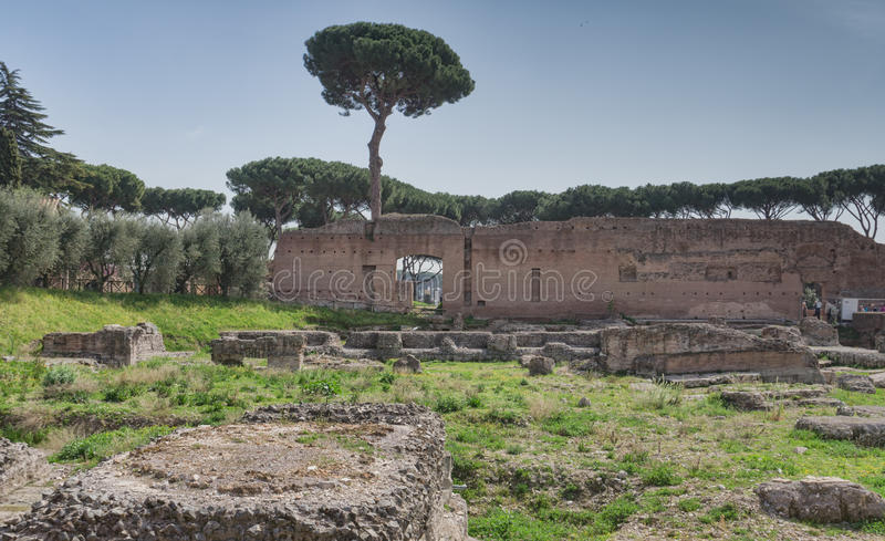 Palatynu wzgórza ruiny, Rzym, Włochy obrazy royalty free