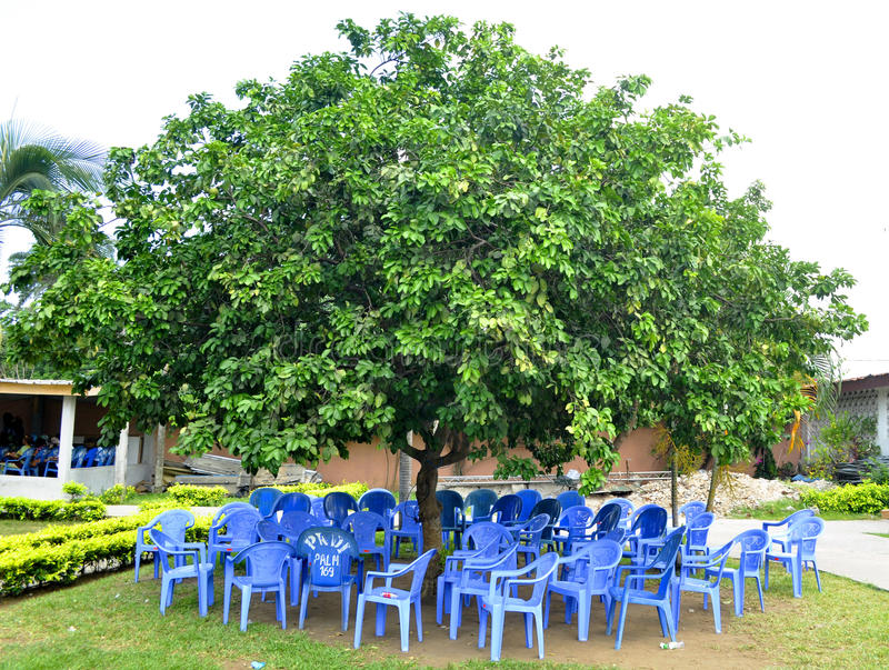 Palaver tree. Image of a traditional gathering place, in whose shadow we solve the problems of the village in Africa royalty free stock images