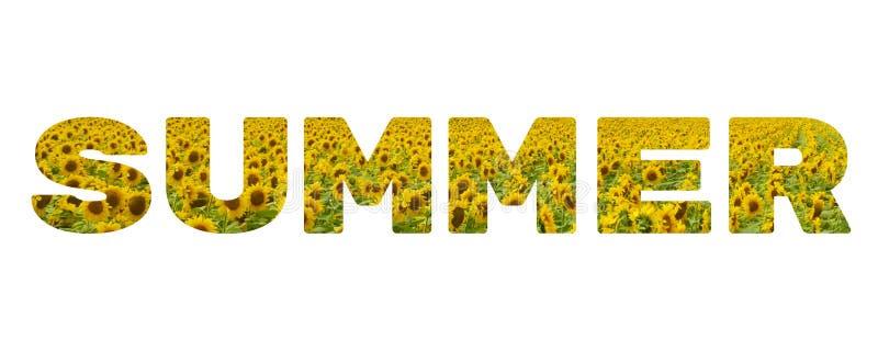A palavra 'verão ' Inscrição amarela no fundo branco imagem de stock royalty free