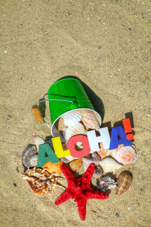 Palavra Aloha com starfish fotografia de stock