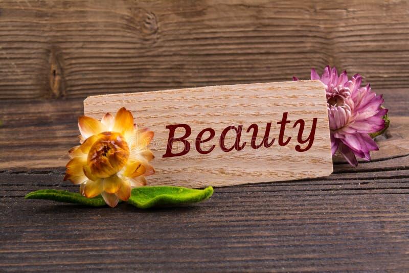 Palavra da beleza foto de stock