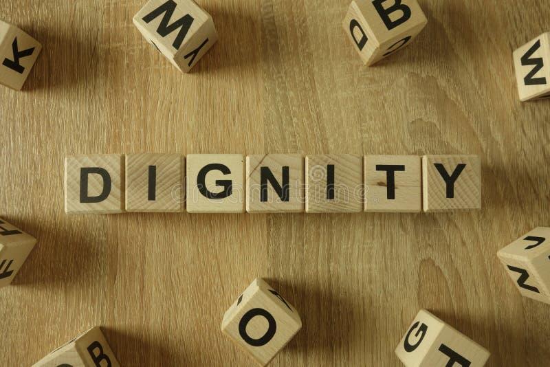 Palavra da dignidade dos blocos de madeira fotografia de stock