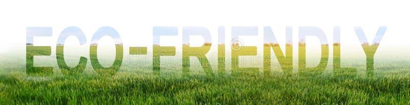 A palavra Eco-amigável no fundo de uma plantação verde nova do trigo Reduzindo a intervenção humana nos ecossistemas fotografia de stock