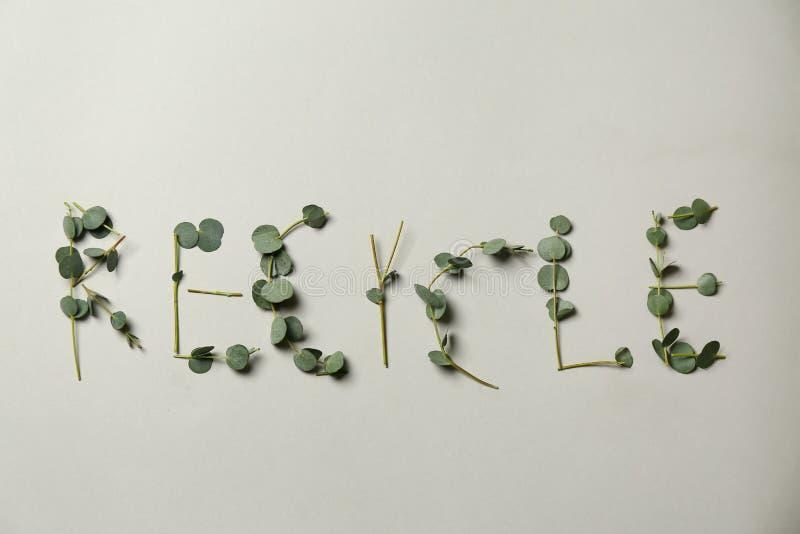 A palavra RECYCLE fez de ramos verdes no fundo claro imagens de stock