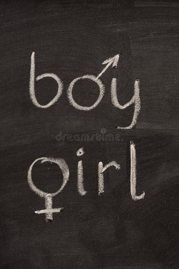 Palavras do menino e da menina com símbolos do género imagens de stock royalty free