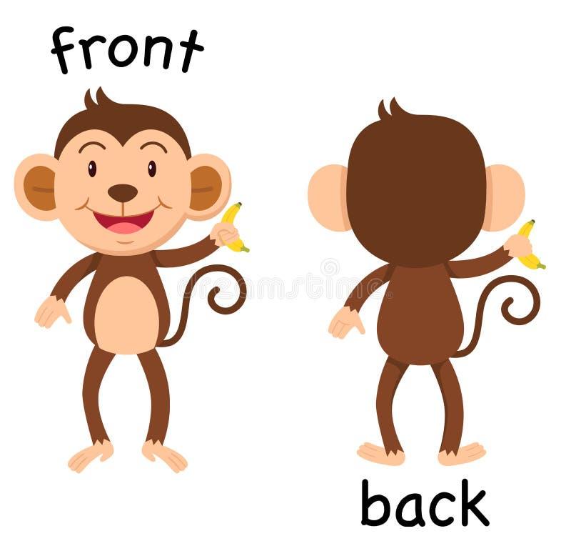 Palavras opostas dianteiras e vetor traseiro ilustração stock