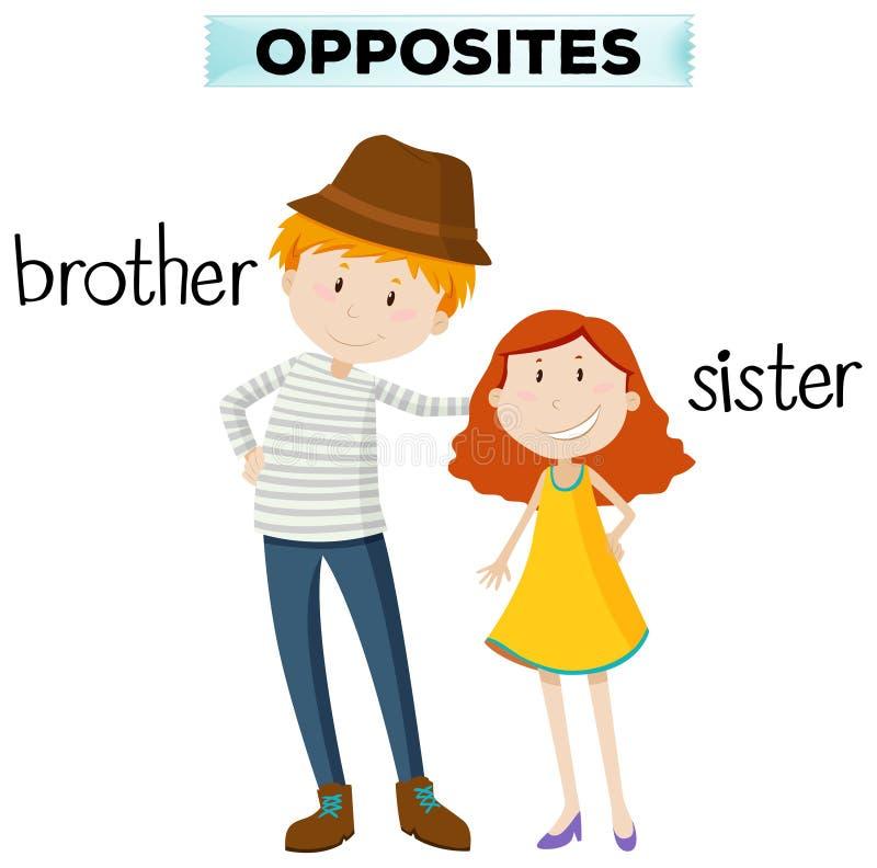 Palavras opostas para o irmão e a irmã ilustração do vetor