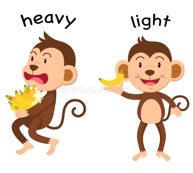 Palavras opostas pesadas e vetor claro ilustração stock