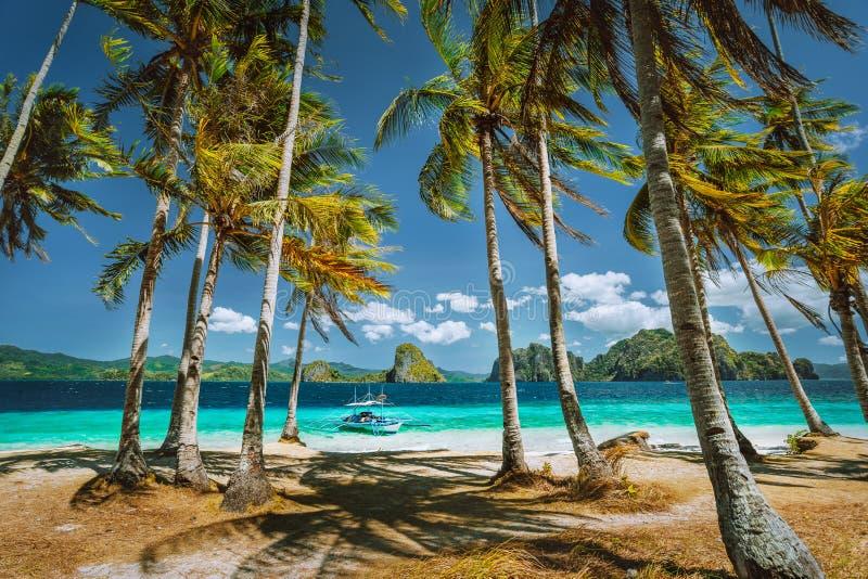 Palawan l'explorant la plupart des taches touristiques célèbres Palmiers et bateau isolé de visite de voyage d'île en île sur la  image libre de droits