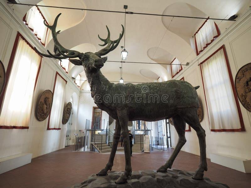 Palazzina di Stupinigi皇家狩猎小屋在尼凯利诺 库存图片