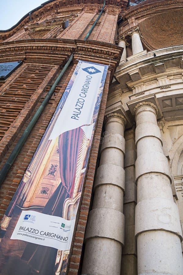 Palazzo卡里尼亚诺,都灵,意大利细节  免版税图库摄影