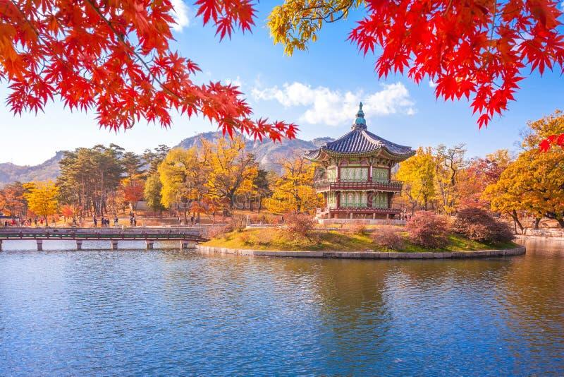 Palazzo con le foglie di acero, Seoul, Corea del Sud di Gyeongbokgung immagine stock libera da diritti