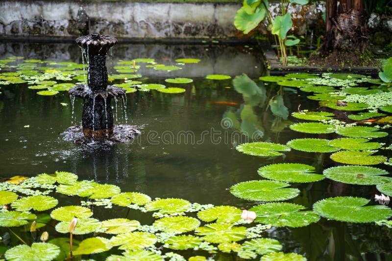 Palazzo dell'acqua di Tirta Gangga, Karangasem, Indonesia Bello palazzo popolare dell'acqua con le fontane ed i demoni indù tradi immagini stock libere da diritti