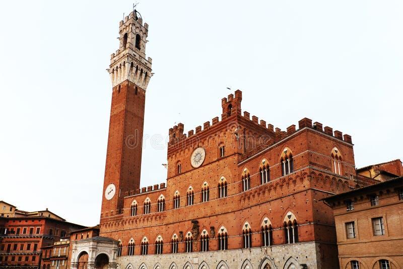 Palazzo Pubblico och Mangia står högt Torre del Mangia i Siena royaltyfri foto