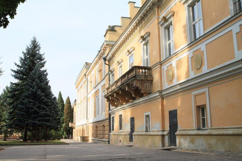 Palazzo in Svetla nad Sazavou immagini stock libere da diritti