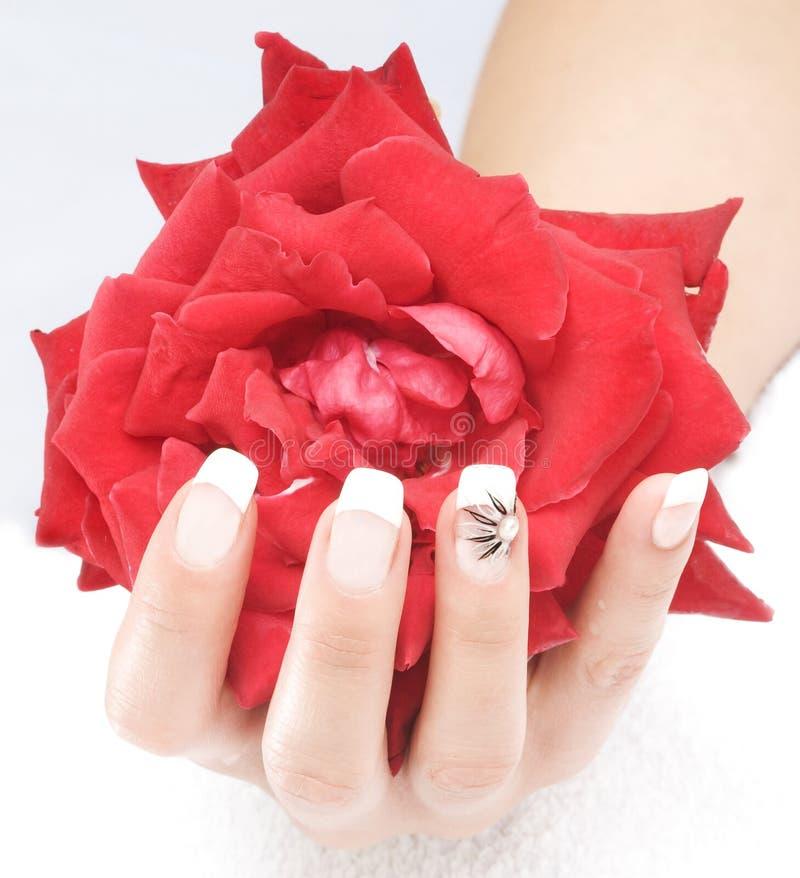 palców piękni gwoździe zdjęcia royalty free