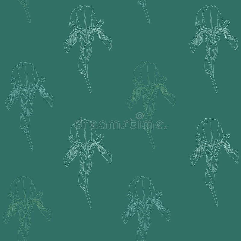 Pale Iris flowers on a green background. Simple seamless pattern. stock illustration
