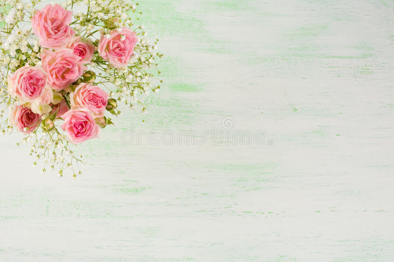 Pale pink roses and white flowers on light green background royalty free stock image