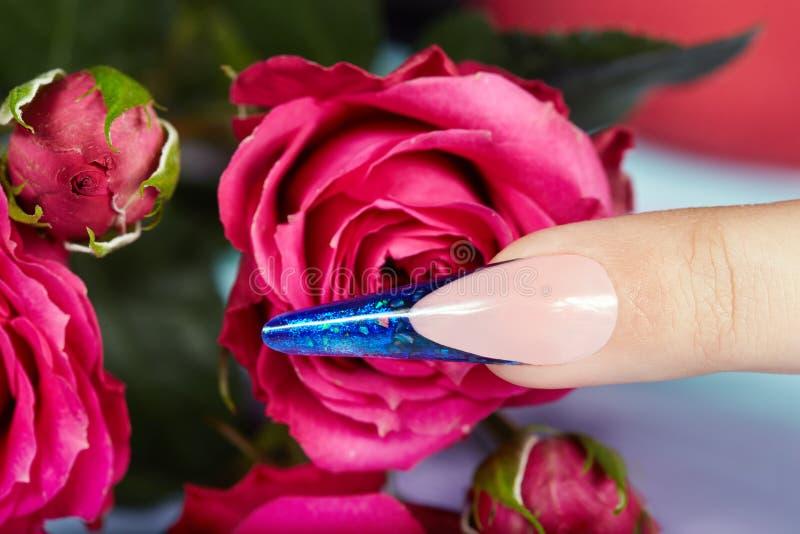 Palec z długi sztuczny błękitny francuz robiącymi manikiur gwoździami i wzrastał kwiaty fotografia stock