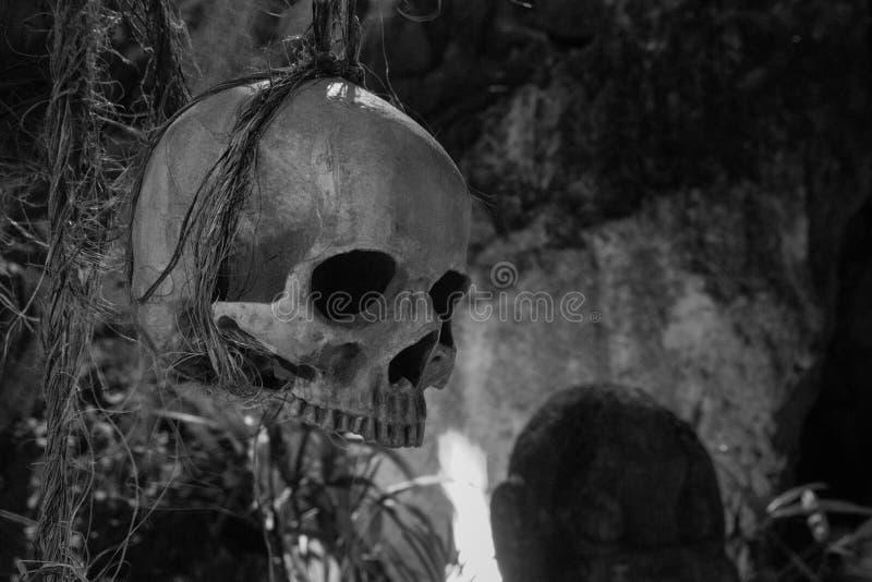 Palella umana che appende sulla corda in bianco e nero Simbolo di morte Concetto di orrore e di timore Palella spettrale isolata immagini stock libere da diritti