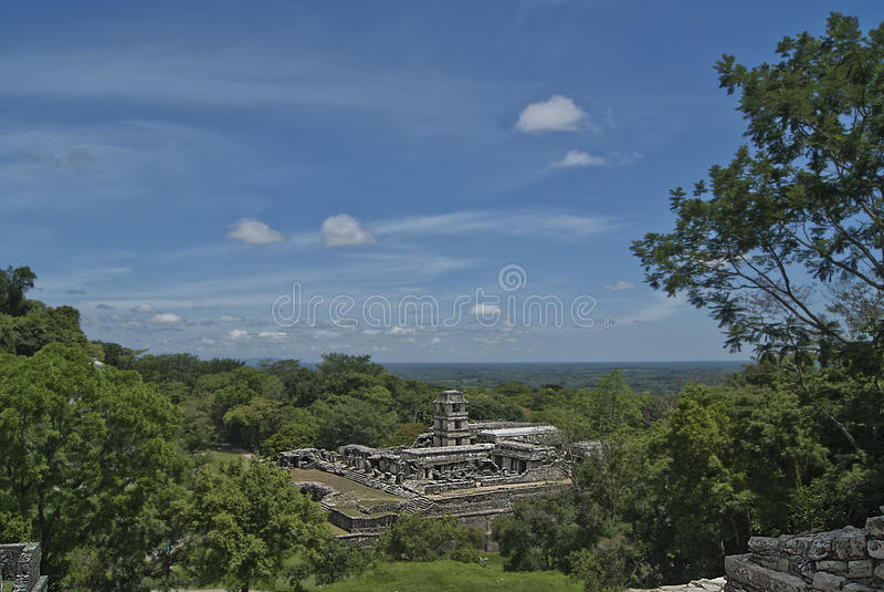 Palenque chiapas royaltyfria foton