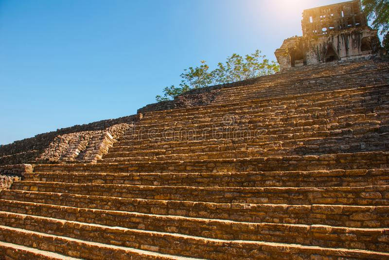 Palenque, Chiapas, México: Área arqueológica con ruinas, templos y pirámides en la ciudad antigua del maya foto de archivo libre de regalías