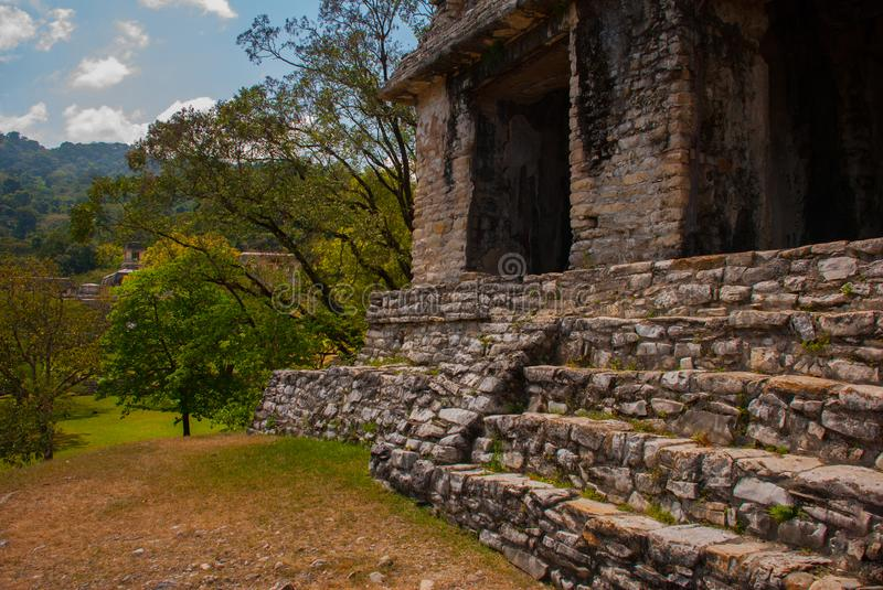 Palenque, Chiapas, Mexico: Ancient Mayan city among trees in Sunny weather. The archaeological area with the ruins royalty free stock photos