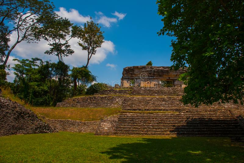 Palenque, Chiapas, Mexico: Ancient Mayan pyramid with steps among the trees in Sunny weather. Ancient Mayan city stock photography