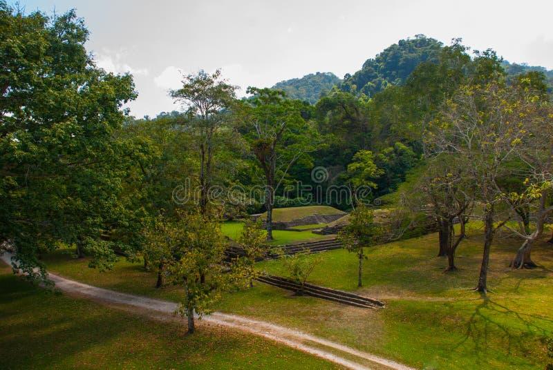 Palenque, Chiapas, Mexico Hoogste mening van de wildernis en de oude Mayan stad royalty-vrije stock afbeeldingen