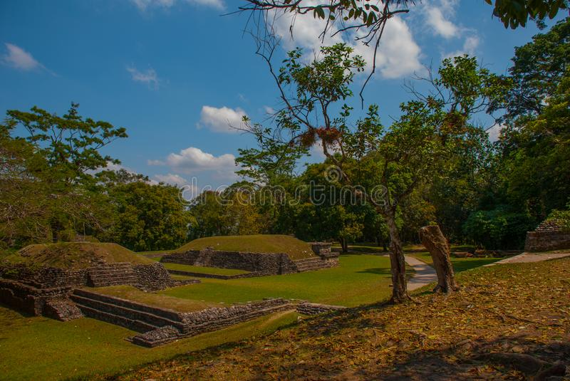 Palenque, Chiapas, Mexico: Mayan ruins taken over by lush jungle. Ancient Mayan city stock photo